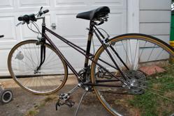 Lowcarwk1-bike